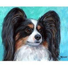 TRICOLORED PAPILLON ON LIGHT TURQUOISE BACKGROUND  DOG ART PRINT FROM ORIGINAL PAINTING BY DOTTIE DRACOS MULTIPLE SIZES/STYLES AVAILABLE (Shipping
