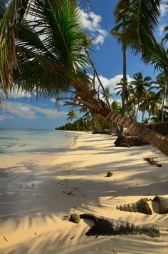 Punta Cana Beach, Dominican Republic..
