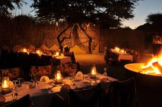 Overlooking one of the reserve's bigger waterholes, Tau Game Lodge is a well-positioned, privately owned accommodation option for families and groups of friends… North West Province, Game Lodge, Free State, Kwazulu Natal, Social Activities, Tour Operator, Travel Tours, Famous Places, Holiday Fun