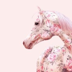 """3,005 Likes, 14 Comments - Lisa McConniffe 爱 (@lisamcconniffe) on Instagram: """"Floral horse // by @paulfuentes_design ✨✨✨ #floral #horselover #pastelpink #contemporaryart…"""""""