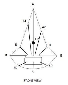Basic Arrangement Forms In Floral Designing