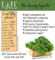 Kale and it's amazing health benefits from Trinity's Kitchen. #kale #plantbased