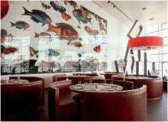 Darwin cafe, Lissabon