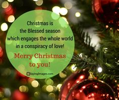 112 Best Merry Christmas Quotes Wishes Pictures Images Images