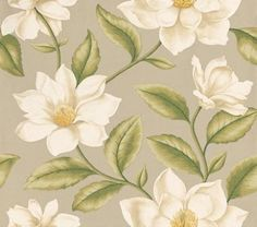 Grandiflora (DAPGGR104) - Sanderson Wallpapers - Huge magnolia blooms, with their rich waxy texture and creamy tones luxuriate in their elegant beauty with subtle metallic ink effects. Available in 4 colourways – shown with cream lustre petals, fresh green leaves on a soft grey green base. Please ask