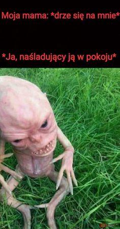 Wtf Funny, Funny Cute, Polish Memes, Weekend Humor, Funny Mems, True Memes, Nanami, Good Mood, Bts Memes
