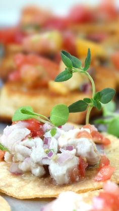 As a matter of fact, this Tostadita de Ceviche appetizer is very happy to see you. [PICTURED: red snapper ceviche as served at a recent wedding in #DelMar CA]  More info: https://www.sohotaco.com/2016/07/30/cool-flavorful-refreshing-tostaditas-de-ceviche-appetizers