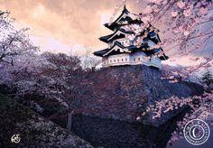 Hirosaki Castle in Japan  Hirosaki Castle. Spring 2011. (Japan). © Glenn Waters.