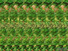 Stereogram by 3Dimka: Meanwhile in jungle. Tags: chimps, chimpanzee, banana, funny, fall, hidden 3D picture (SIRDS)