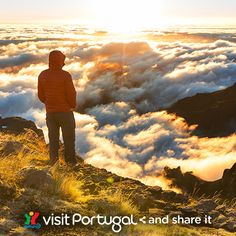 Find out what makes #Madeira the ideal setting for your next holiday photos #visitportugal #PORTUGAL