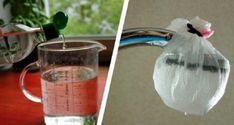 14 Clever Deep Cleaning Tips & Tricks Every Clean Freak Needs To Know Deep Cleaning Tips, House Cleaning Tips, Spring Cleaning, Cleaning Hacks, Cleaning Recipes, Homemade Toilet Cleaner, Clean Hardwood Floors, Clean Baking Pans, Cleaning Painted Walls