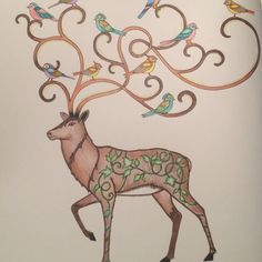 Johanna Basford   Colouring Gallery