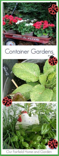 Container Garden Ideas! http://ourfairfieldhomeandgarden.com/container-gardens-our-fairfield-home-garden/
