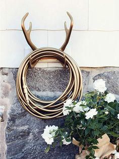 Brilliant garden hose + antler wallmount in gold.