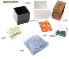 Zakka雜貨網: 陶碳球植物園-水萍草+藍陶碳球