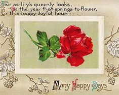 Craft Corner This Card is Circa 1912. Antique Vintage Postcard With Best Wishes Theme and Colorful Rose Blossoms and Purple Pansies