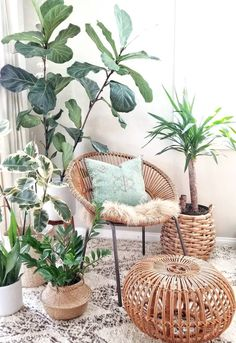 DIY Decor Ideas To Give Your Space That Log Cabin Vibe. If you're into boho ru., 4 DIY Decor Ideas To Give Your Space That Log Cabin Vibe. If you're into boho ru., 4 DIY Decor Ideas To Give Your Space That Log Cabin Vibe. If you're into boho ru. Living Room Decor, Bedroom Decor, Plants In Bedroom, Plant Rooms, Living Room Plants Decor, House Plants Decor, Design Bedroom, Bedroom Ideas, Dining Room
