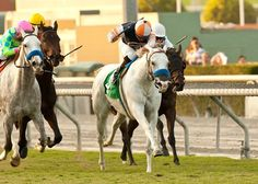 Egg Drop and jockey Martin Garcia hold off Miss Pippa to win the Grade II $150,000 Goldikova Stakes at Santa Anita Park in Arcadia CA.
