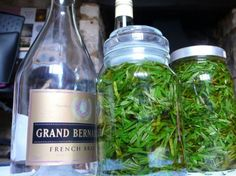 Instead of purchasing tinctures from health food shops, you can easily make your own by steeping fresh or dried herbs in high-proof alcohol.