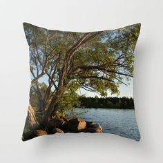 Scenic Decorative Throw Pillow Cover Nature by CrystalGaylePhoto, $35.00