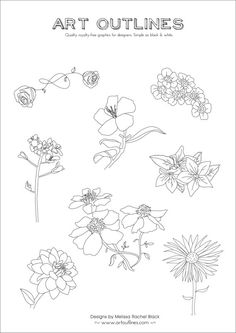 Set of 8 Original Hand Drawn Flowers  Full Page by ArtOutlines, $12.00