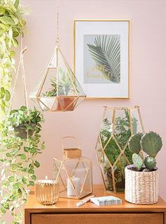 50 Trendy Bedroom Pink Walls Home Decor Bedroom Green, Green Rooms, Garden Bedroom, My New Room, My Room, Deco Cactus, Cactus Bedroom, Deco Pastel, Deco Rose
