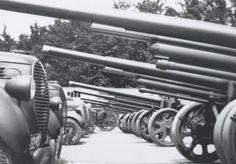 Zes stukken Bofors 10 cm veldgeschut op een kazerneterrein, met daarachter de bijbehorende Ford V8 Trado-trekkers.