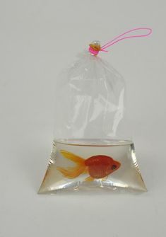 """The bag is real, the """"water"""" is clear resin and the fish is PAINTED!!!! Amazing - RIUSUKE FUKAHORI http://www.widewalls.ch/artist/riusuke-fukahori"""
