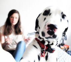 #selfie Maggie !
