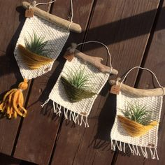 Diy Crafts - Air plants woven wall hanging woven wall hanging home decor Woven Wall Hanging, Hanging Plants, Yarn Crafts, Diy And Crafts, Crochet Wall Hangings, Macrame Design, Macrame Projects, Tapestry Weaving, Crochet Home