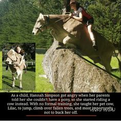 Climbing, Memes, and Angry: hanney Simpson finstagram   As a child, Hannah Simpson got angry when her parents   told her she couldn't have a pony, so she started riding a   cow instead. With no formal training, she taught her pet cow,   Lilac, to jump, climb fallen and mosWmportaptly   not to buck her off.