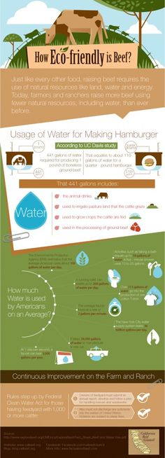 How Eco-Friendly is Beef? Infographic from calbeef.org