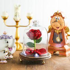Enchanted Rose Cloch...