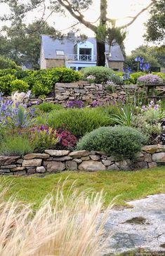 Un jardin breton d'agapanthes et d'hortensias bleus – Nicole Malbet - Landscaping Backyard