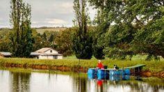 Mowbray Park Farm Stay