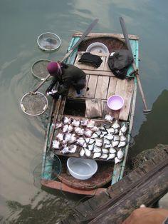 Shell Fishing - Ha Long Bay, Quang Ninh