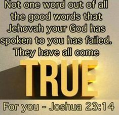 We know that Jehovah will take action against this world of ungodly people because not 1 word that He said has failed. For answers to ur questions go to JW.org