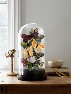 How to create butterfly cloches. #decor #diy