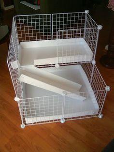 Diy Guinea Pig Cage, Guinea Pig House, Pet Guinea Pigs, Guinea Pig Care, Bunny Cages, Rabbit Cages, Gerbil, Hamsters, House Hippo