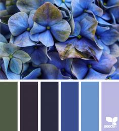 Jessica Colaluca is principal and owner of Seed Design Consultancy, and creator of Design Seeds. Living Room Color Schemes, Colour Schemes, Color Combinations, Pallet Pictures, Colour Pallette, Color Tones, Jewel Tones, Neue Outfits, Colour Board