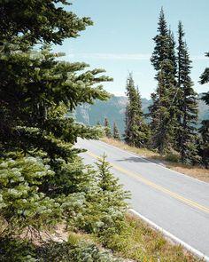 All images captured during a roadtrip through British Columbia, Washington, Oregon, California, Nevada, Wyoming between september and november 2015. Copyright Matthias Heiderich + Elias Verhallen, 2016. http://www.matthias-heiderich.de / instagram.com/eli…