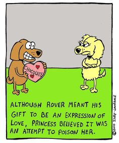 "So my dog! ""Although rover meant his gift to be an expression of love, Princess believed it was an attempt to poison her"""