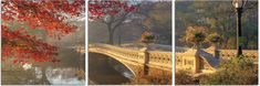 New York City's Central Park, of the most popular tourist destinations worldwide, is depicted here in all its Autumn wonder. $220 Available in 3 sizes. Elementem Photography, triptych, New York, New York City, bridges, Central Park, Fall, landscape, cityscape
