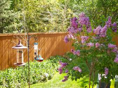 Decorate Your Backyard With Bird Feeders Check more at http://www.wearefound.com/decorate-your-backyard-with-bird-feeders/