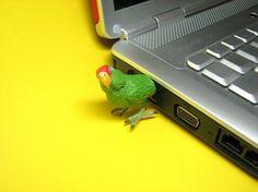Parrot USB Flash Drive