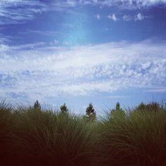 .@jenclix | Road Trip! #sky #grass #clouds #fpoe #julyphotochallengefpoe