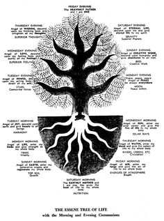Essene Tree of Life with the morning and evening communions