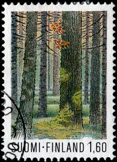 Forest / Forests / Ecosystems on Stamps - Stamp Community Forum - Page 4 Forest Ecosystem, Postage Stamp Art, Going Postal, Love Stamps, Vintage Stamps, Mail Art, Stamp Collecting, Pin Up, Around The Worlds