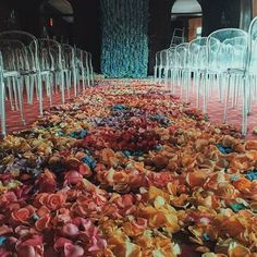 "The Wed List on Instagram: ""The pairing of wedding and flower is indeed a match made in heaven! This wedding ceremony setup adorned with luscious use of in colorful shade all along the aisle runner is a great alternative for brides who want to keep things simple with a pop of color. Complete it with ghost chair line up and this décor absolutely breathes an ethereal yet modern atmosphere, don't you think? Show some love! Flower by @brrch_floral via @weddingdream"""