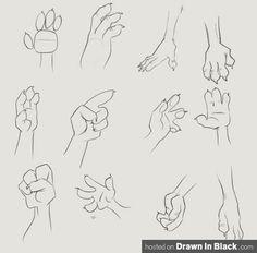 dibujar manos de animal